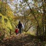 Balade en famille en forêt de Mervent