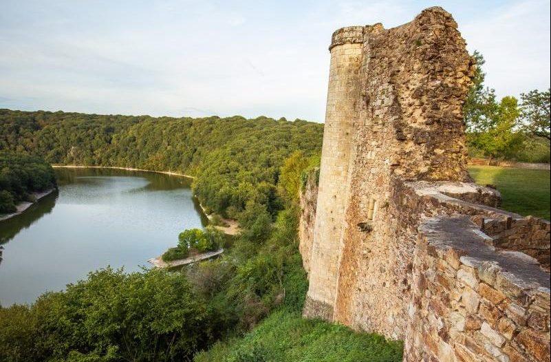 Château et forêt de Mervent
