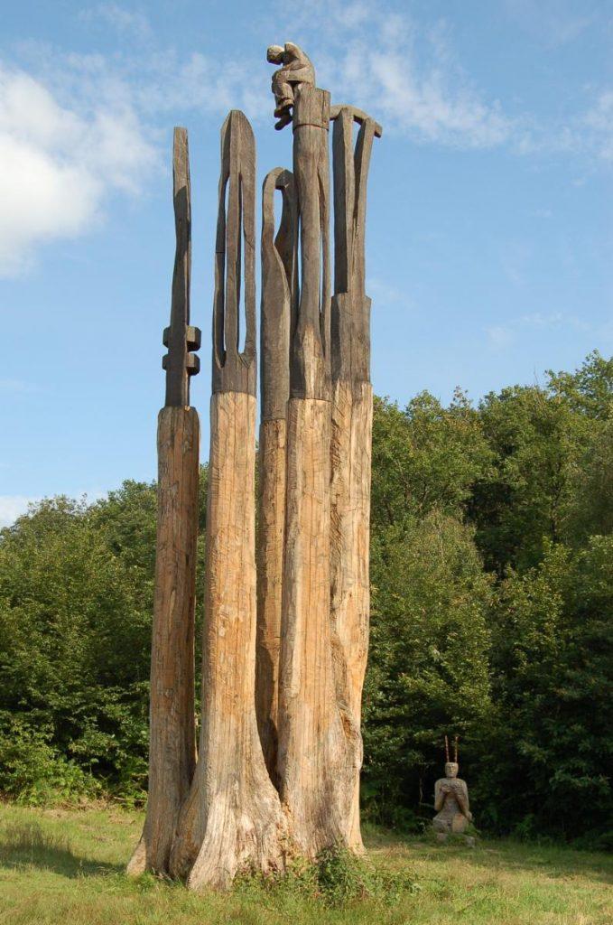 Arbre remarquable en forêt de Mervent les cinq jumeaux